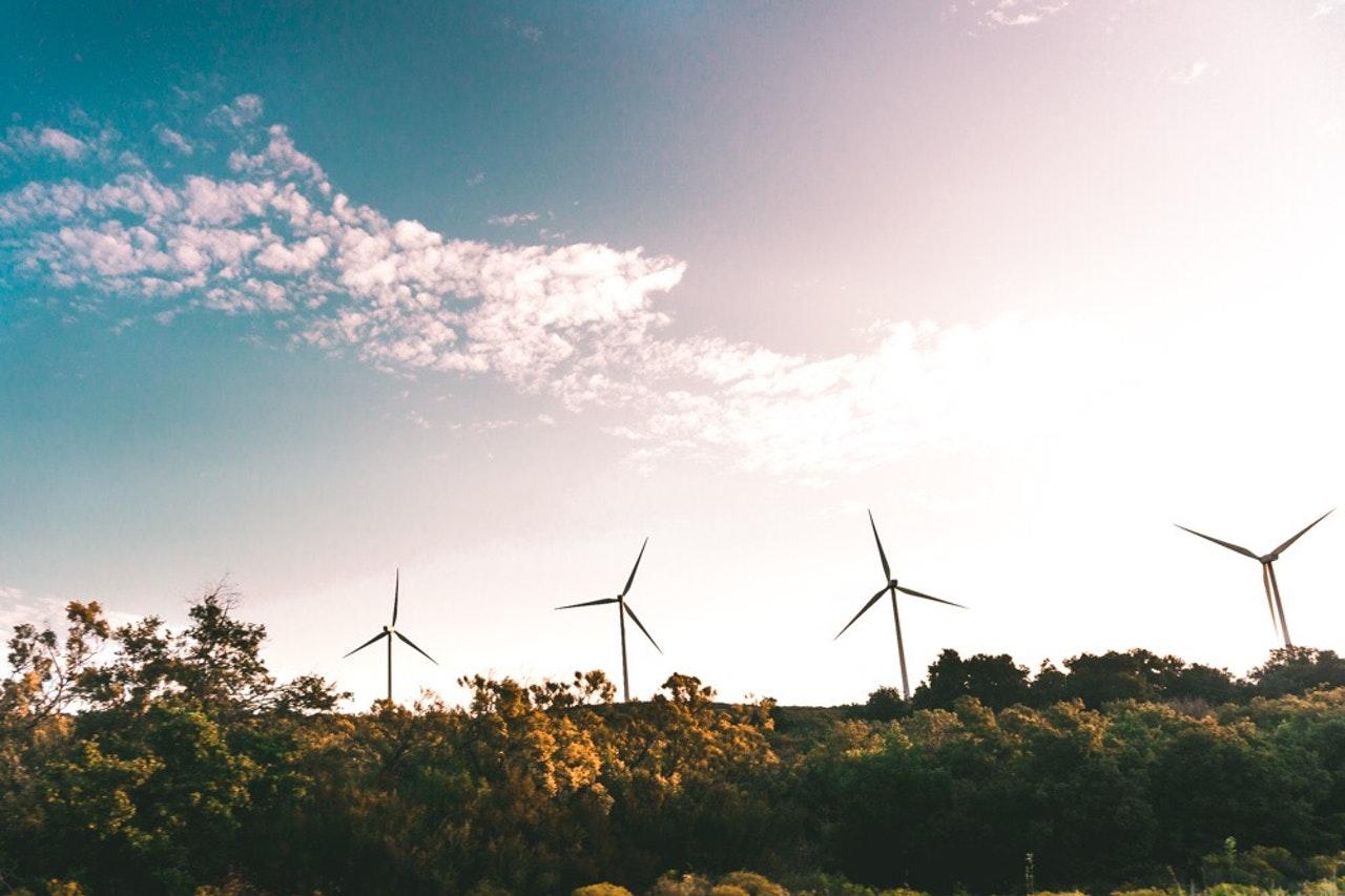 Environmental, Social and Governance: uma bússola para nortear o sucesso do seu negócio